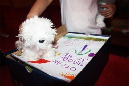 НАРД организира кампания в подкрепа на пострадалите деца от наводненията във Варна и Добрич