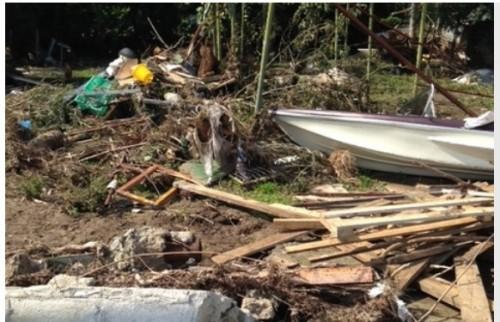 Бизнесът подава ръка на пострадалите от бурята