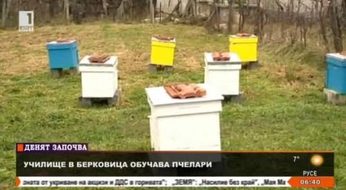 Училище обучава пчелари безплатно