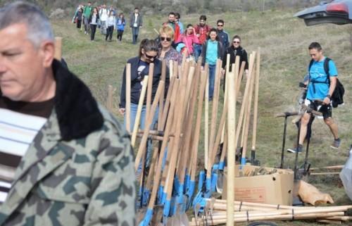 Доброволци садят хиляди дървета всеки уикенд