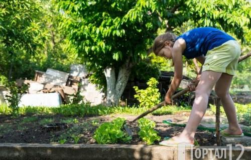 Ученици започват грижи за възрастни хора и техните дворове по селата