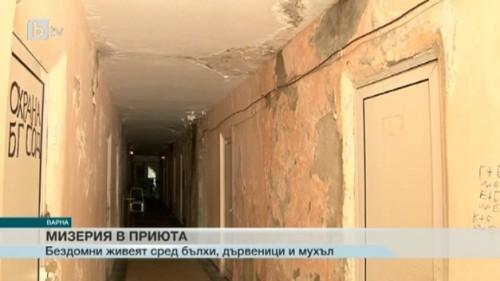 Мизерия в приют за бездомни във Варна, хората се оплакват от бълхи и дървеници