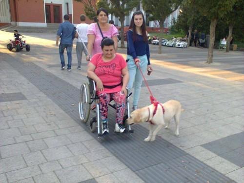 Жена с болна сестра и дъщеря моли за подкрепа