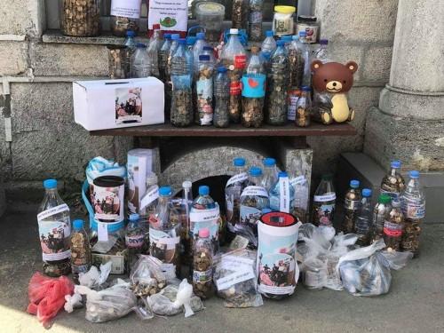 Над 4 хил. лв. в жълти стотинки събраха деца от Каварна в помощ на малкия Теди