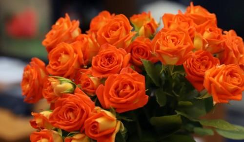 Пари за болницата вместо цветя на сватбата