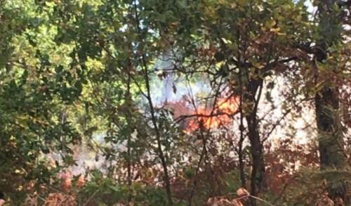 В Голешово предлагат сформиране на доброволчески групи за гасене на пожари